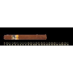 Cohiba Siglo III 25 Cigars