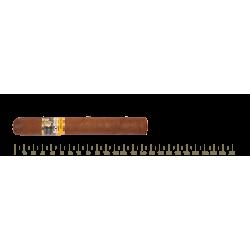 Cohiba Siglo IV 5 Cigars