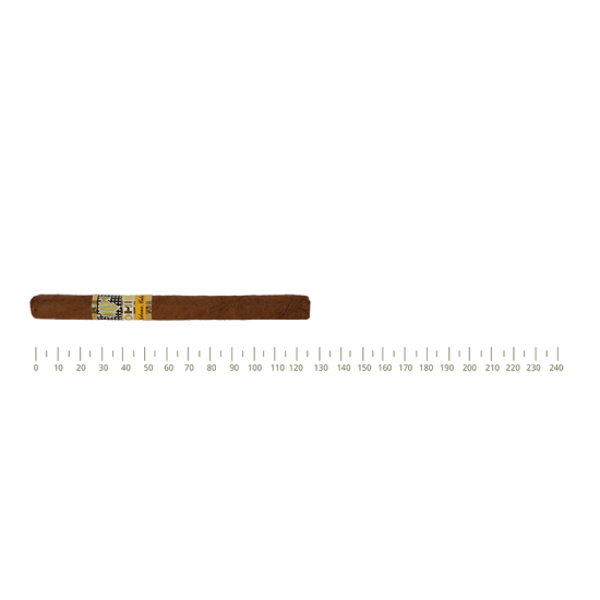 Cohiba Exquisitos 5 Cigars