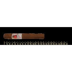 Hoyo de Monterrey Epicure No.1 25 Cigars