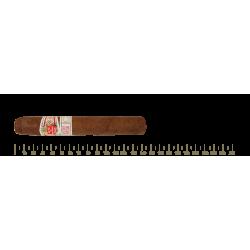 Hoyo de Monterrey Epicure Especial 25 Cigars