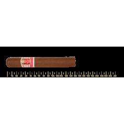 Hoyo de Monterrey Hoyo de San Juan 10 Cigars
