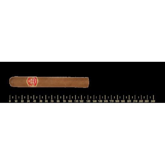 Partagas Mille Fleurs 10 Cigars