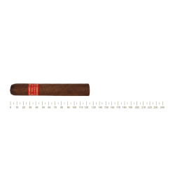 Partagas Serie D No.4 10 Cigars