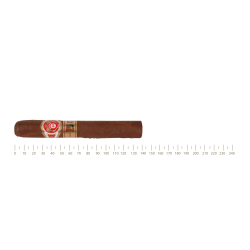 Punch Punch 48 10 Cigars