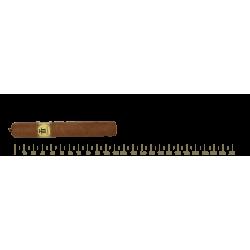 Trinidad Reyes 24 Cigars