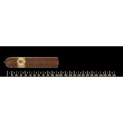 Trinidad Vigia 12 Cigars