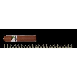 Vegueros Entretiempos 16 Cigars