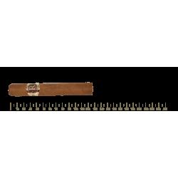 Vegas Robaina Famosos 25 Cigars